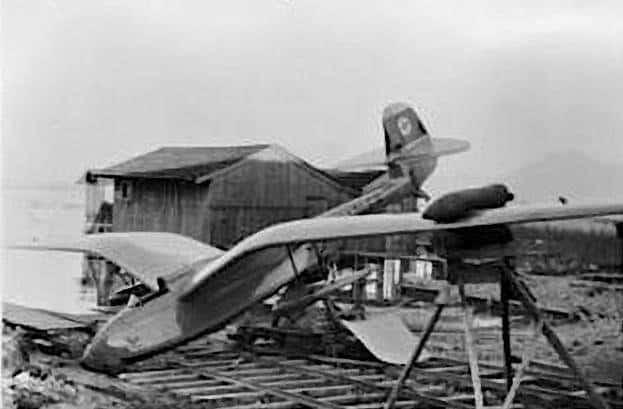 Seeadler 31
