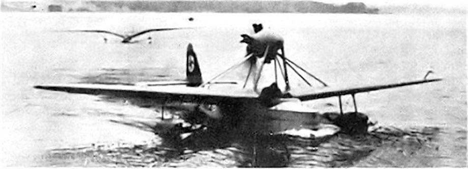 Seeadler 7