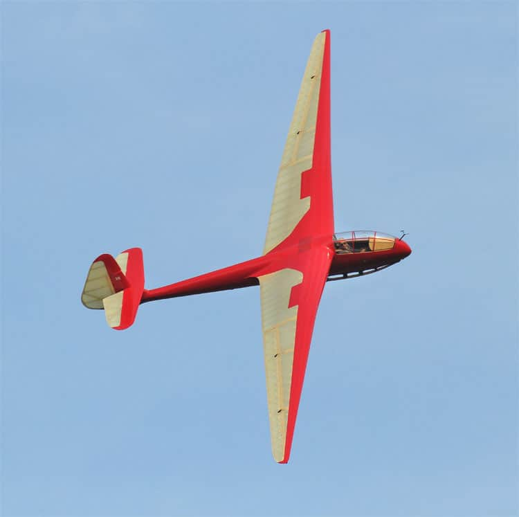 Red Petrel s